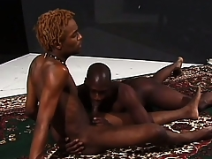 Hung ebony stallions grunt as A they make ardent dote on gather up