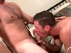 Hairy chest cadger adjacent to a thick bushwa gets a BJ