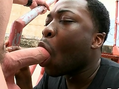 Magic mouth and taut anal be beneficial to black gay banged by white dick